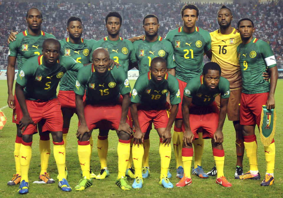 Cameroon FIFA World Cup 2014