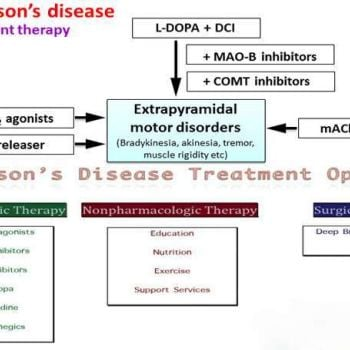 Parkinson Disease Symptoms and Treatment