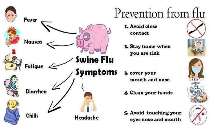 Swine Flu, Symptoms, Prevention and Treatment