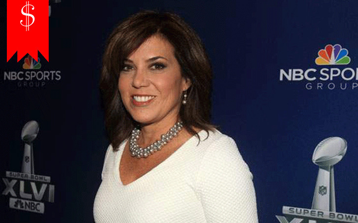 Sportscaster Michele Tafoya is hopeful of a brilliant career ahead with her increasing net worth