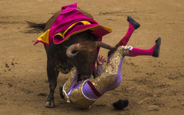 A Rookie Bullfighter Left Bloodied During Training Session in Valencia, Spain