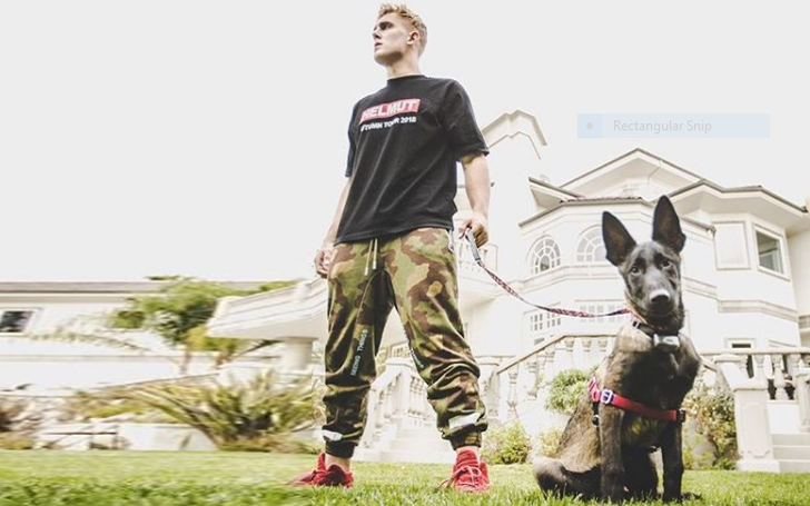 Is Jake Paul Married? Details Of His Relationship And Children.