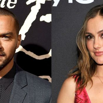 Grey�s Anatomy Actor, Jesse Williams and Minka Kelly Split after Several Months of Dating