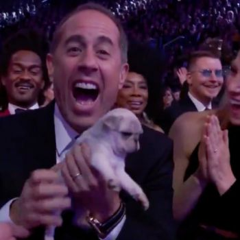 Comedy Nominees Who could not Make It to Gramophone Trophy, Accepted Puppies as Consolation Prize