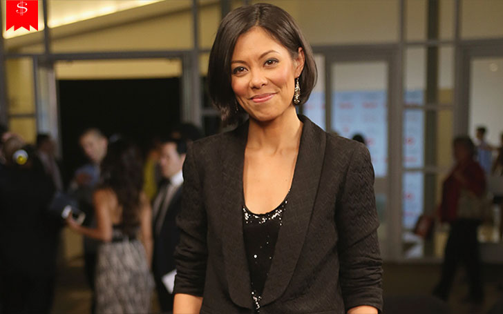 How Much Is The Net Worth Of American Political Commentator Alex Wagner? Her Sources Of Income And Assets