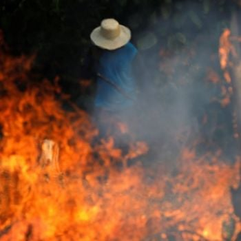 Fire In Amazon Forest Spreading In Record Pace In Years