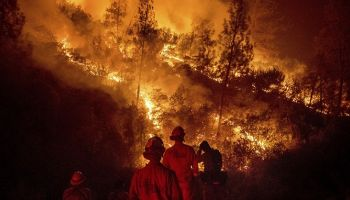 The Largest Wildland Fire In California History Was Caused By Hammer Spark
